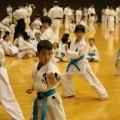 平成30年3月18日第96回関東大会 昇級試験