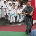 平成28年7月30日 たまプラーザ祭り 上田発雄師範 無双直伝英信流居合道
